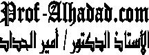 الأستاذ الدكتور / أمير الحدادا